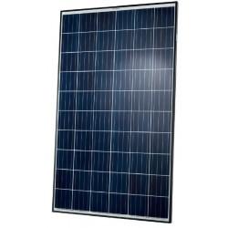 Solární panel Q-CELLS 290Wp POLY