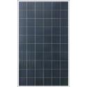 Solární panel BYD 270